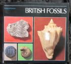 BRITISH FOSSILS BY JOHN THACKRAY.
